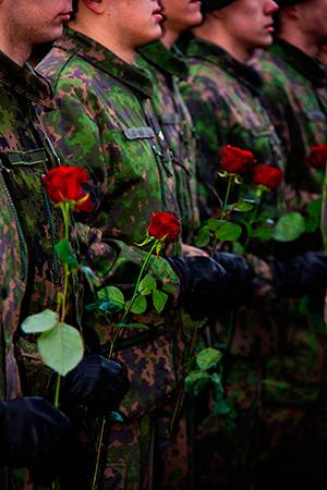 ruusurynnäkköPienennetty2